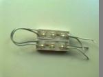 3 LED MODULE 0,30 W